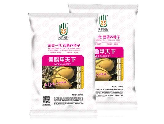 哈尔滨西葫芦种子