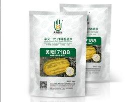 美粮国际7188
