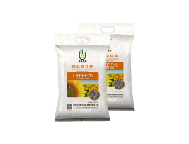 辽宁CH9331